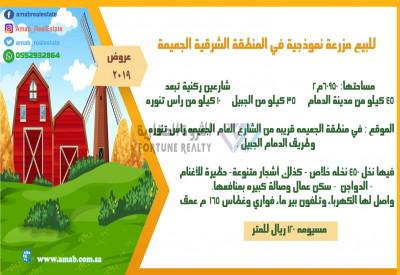 للبيع مزرعة نموذجية في المنطقة الشرقية الجعيمة